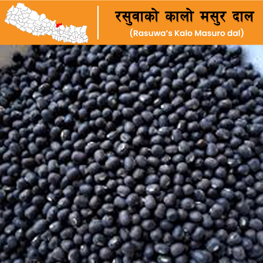 Nepal Special Kalo Masuro Daal from Rasuwa District (500 grams)
