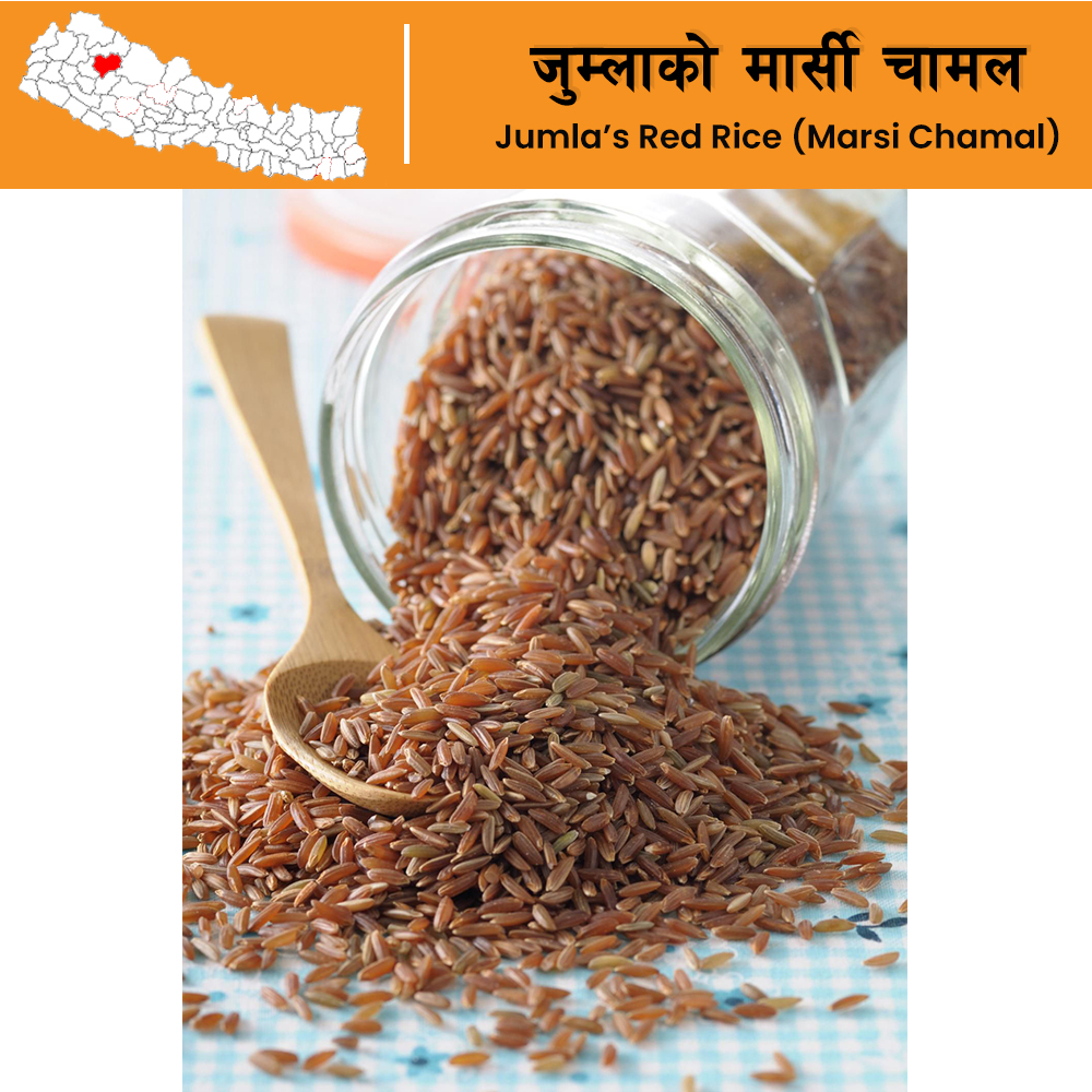 Nepal Special Marsi Chamal (Red Rice) from Jumla (500 grams)