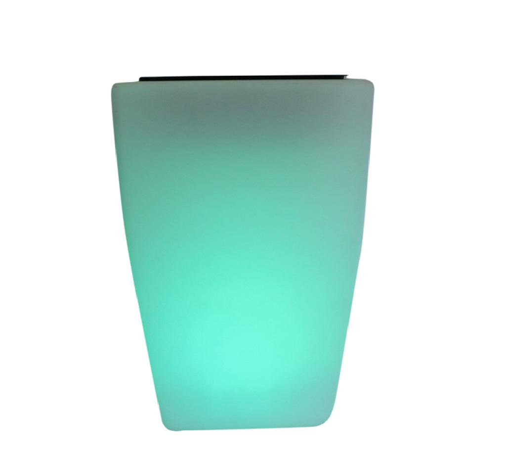 LED Light Flower Vase Small